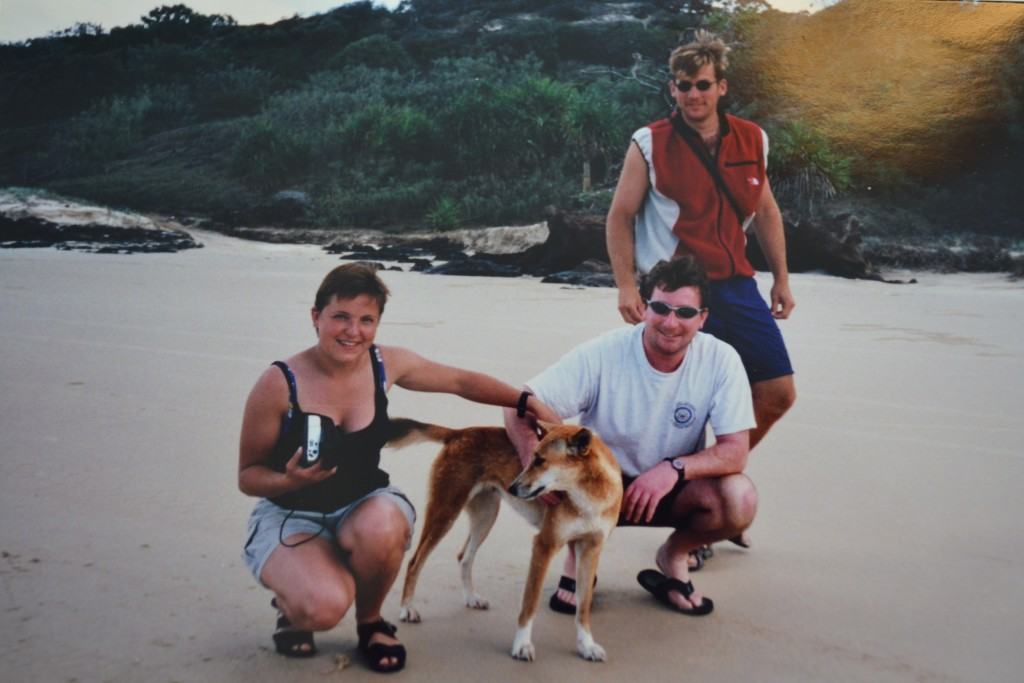 Dingo reisetips australia