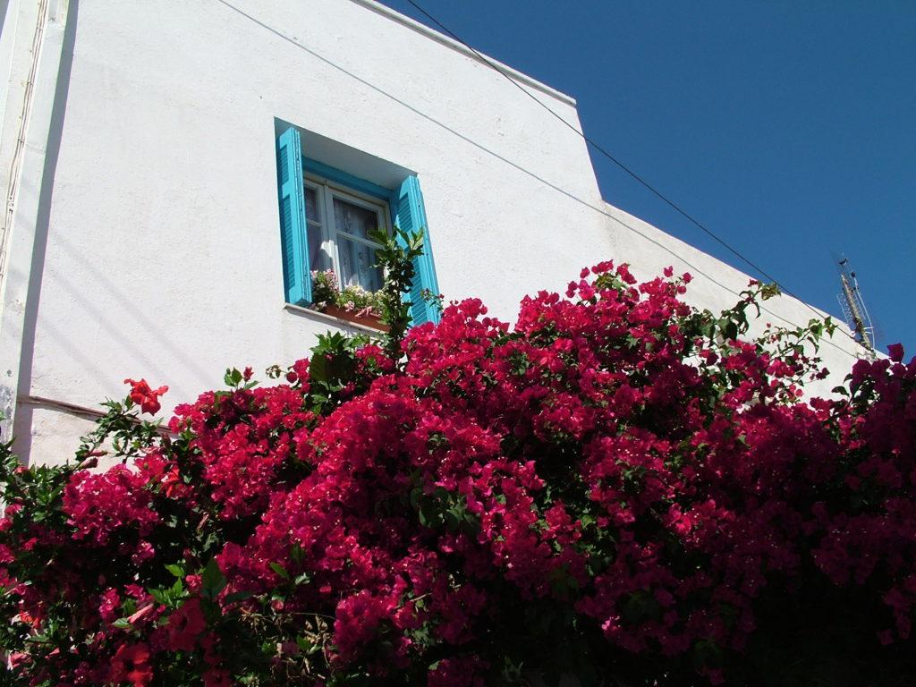 Reisetips, Hellas, Antiparos, Øyhopping, barnevennlig, strand